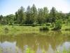Озеро ботанічного саду