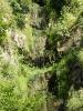 Водоспад в каньоні