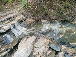 Річка Дібруха