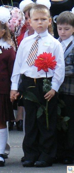 Першоклашка з квіткою